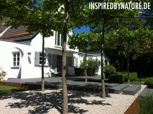 IMG 0828 300x224 Moderne Gartengestaltung   FOTOS 2011