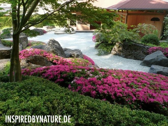 inspiredBynature de Frühling 2012   Japangarten (Deutschland)