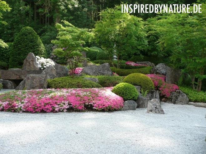 inspiredBynature de1 Frühling 2012   Japangarten (Deutschland)