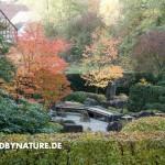 zengarten eu 3 150x150 Designphilosophie